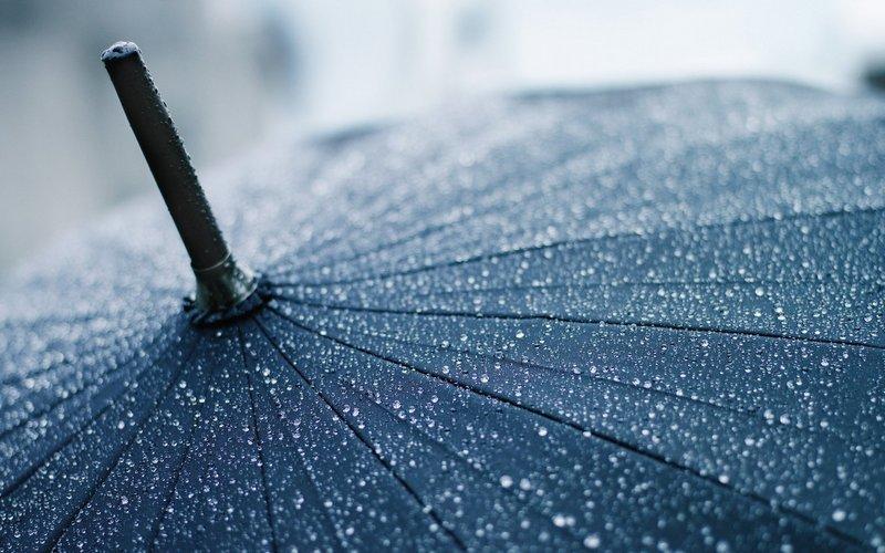 Понедельник в Брянской области будет прохладным и дождливым