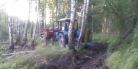 В Брянской области в пятницу тушили лес