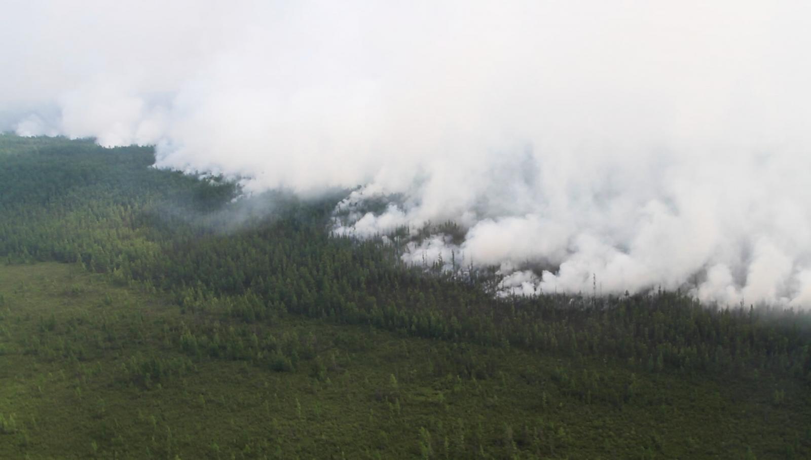 Лесные пожары в Сибири продолжатся до осенних дождей
