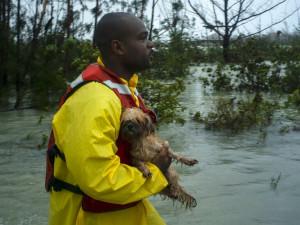 На Багамских островах начались восстановительные работы после разрушительного урагана