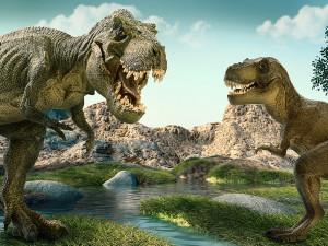 У тираннозавров в голове был «кондиционер»