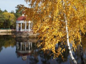 Золотая осень: ценен каждый день и кадр