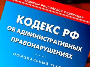Казус Чучайкиной. Как челябинская судья приравняла законное действие к административному нарушению