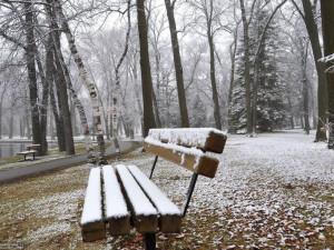 Снега не видать. Но, когда же придет зима?