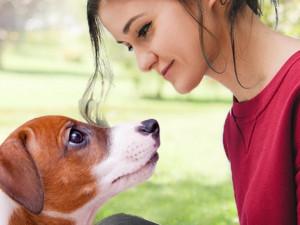 Способность понимать собак говорит о том, откуда мы пришли