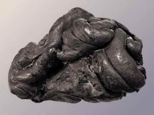 Жвачка, возрастом в 5700 лет, рассказала о жизни древней девочки