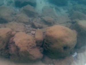 Мрачную историю рассказала подводная каменная стена