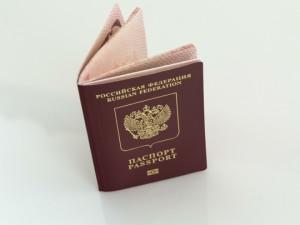 Сколько в России живет людей с двойным гражданством?