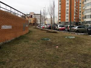 Январь без снега: год на год в Москве не приходится