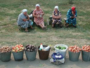 Россиян-садоводов заставят платить налог с продаваемой ими картошки. Инициатива единороссов