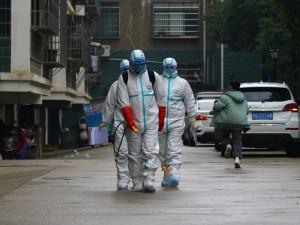 Ошибку в оценке смертельного риска коронавируса признала ВОЗ