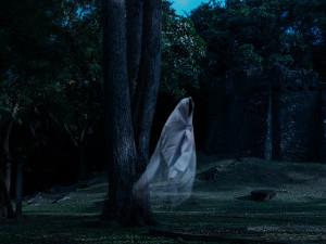 Существуют ли привидения? Что говорят наука и логика