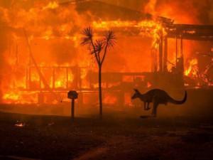 Почти 200 человек арестовано в связи с пожарами в Австралии