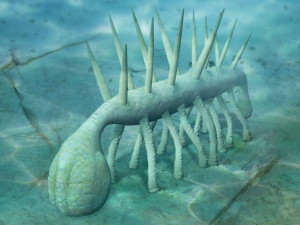 Полмиллиарда лет назад древний червь потерял ноги
