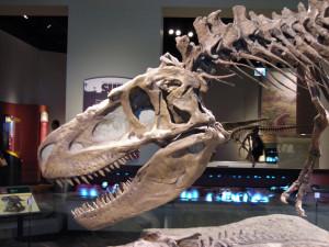 По имени «Смерть»: новый вид древнего хищника открыли в Канаде