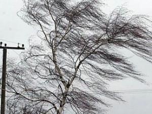 Перед  8 марта в Челябинской области может появиться штормовой ветер