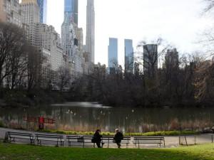 Парки хотят использовать для временного захоронения жертв коронавируса в Нью-Йорке