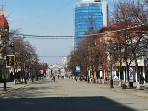 «Лесоповал» на Кировке: станет ли пешеходная улица когда-нибудь зеленым уголком?