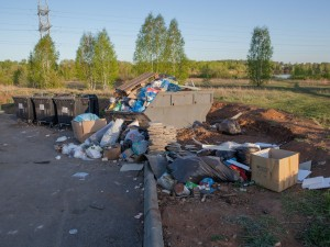 Мусорную свалку нашли в Челябинске даже на Карповом пруде