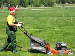 Требуется рабочий зеленого хозяйства в Подольск. Зарплата 14 тысяч рублей