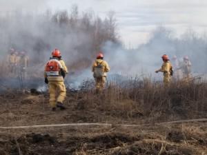 В Челябинской области ввели особый противопожарный режим