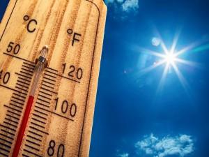 «Лето не поможет». Ученые опровергли популярный миф о коронавирусе