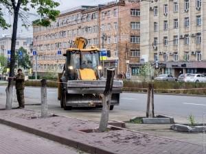 За вырубленные в Челябинске деревья переживают и вице-мэр, и горожане. Подрядчик уже высаживает новые липы