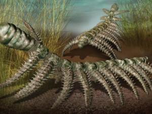 Самое первое земное животное определили ученые