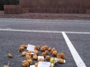 Митинг протеста против поправок в Конституцию устроили в Челябинске с помощью картофеля
