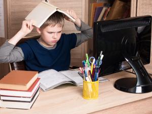 Родители южноуральских школьников боятся, что и следующий учебный год пройдет в дистанционном формате