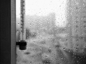 Резкое похолодание с дождями прогнозируют синоптики европейской части России