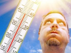 Жара в 40 градусов волной накроет Урал