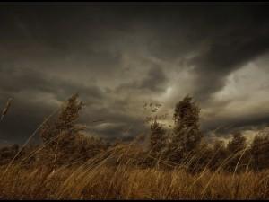 Грозу и шторм ждет Челябинская область, изнывающая от жары