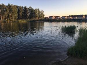 Хорошая вода для купания на пруду в Малиновке