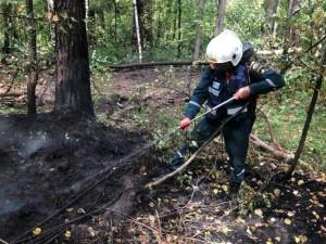 162 пожарных потушили лесной пожар близ Тургояка за несколько дней