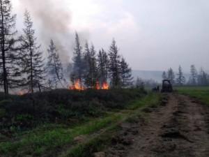 Пожары в Якутии: уничтожено 300 тысяч гектар леса