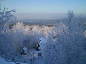 Климатолог предупредила о холодной зиме в Челябинской области