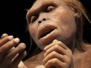 Полтора миллиона лет назад наш предок делал уникальные топоры из ноги гиппопотама
