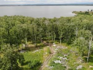 Из-за несанкционированной свалки на берегу озера в Челябинской области в опасности находятся лебеди и цапли