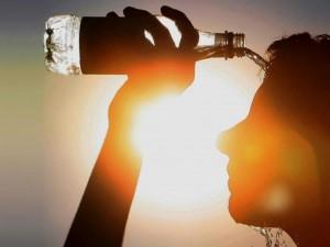 Миллионы жертв от тепловых волн прогнозируют ученые