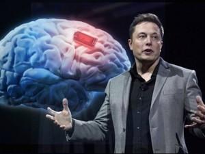 Илон Маск обещает показать работу нейросети уже 28 августа