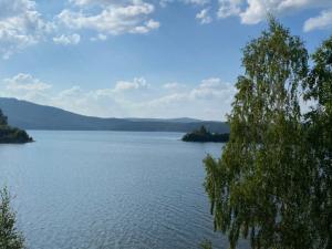 Озеро Аракуль гибнет, жители поселка в Челябинской области рискуют остаться без питьевой воды