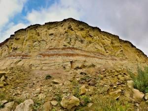 Останки неизвестного науке динозавра нашли в деревне Шестаково