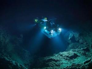 Подводные горы оказались населены неизвестной науке жизнью