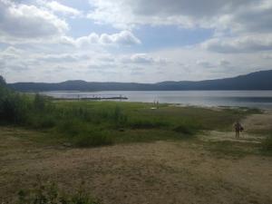 Поручение губернатора по спасению озера Аракуль на Южном Урале проигнорировали?