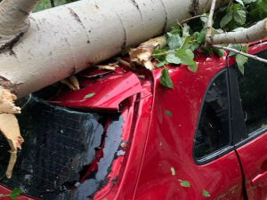 Денежную компенсацию получат челябинцы, чьи машины пострадали во время урагана