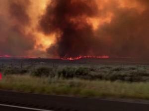 Калифорнийские пожары породили огненный торнадо