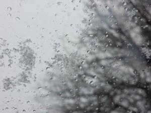 На Урале выпал снег