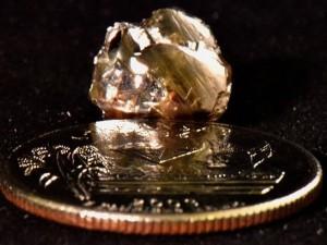 Банкир нашел алмаз в государственном парке в День труда (видео)