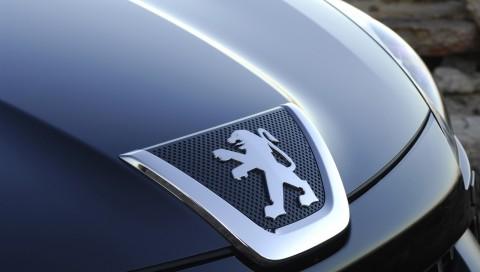 Большой выбор автозапчастей для разных моделей Peugeot из Европы